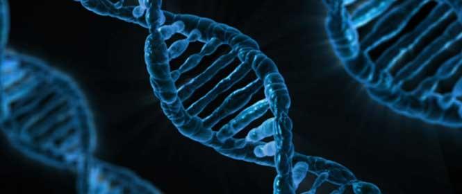 Genetické vlohy